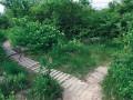 Přírodní památka Kavky. V nětkerých částech jsou i zpevněné chodníčky pro pěší.
