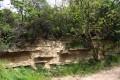 Stará pískovna - Brno-Obřany. Pohled na podstatnou část stěny výchozu.
